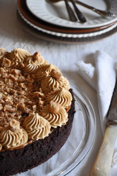 Chocolate Cake with Salty Hazelnut Brittle Recipe
