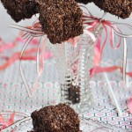 Triple Chocolate Marshmallow Treats Recipe